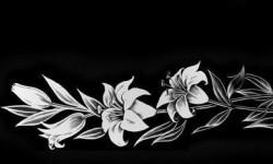 Цветы 008
